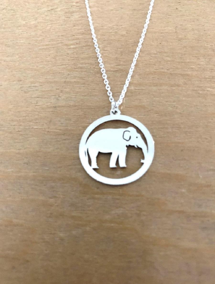 Elephant pend site 1